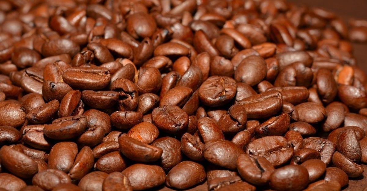 ¿Qué café es mejor para el estómago?