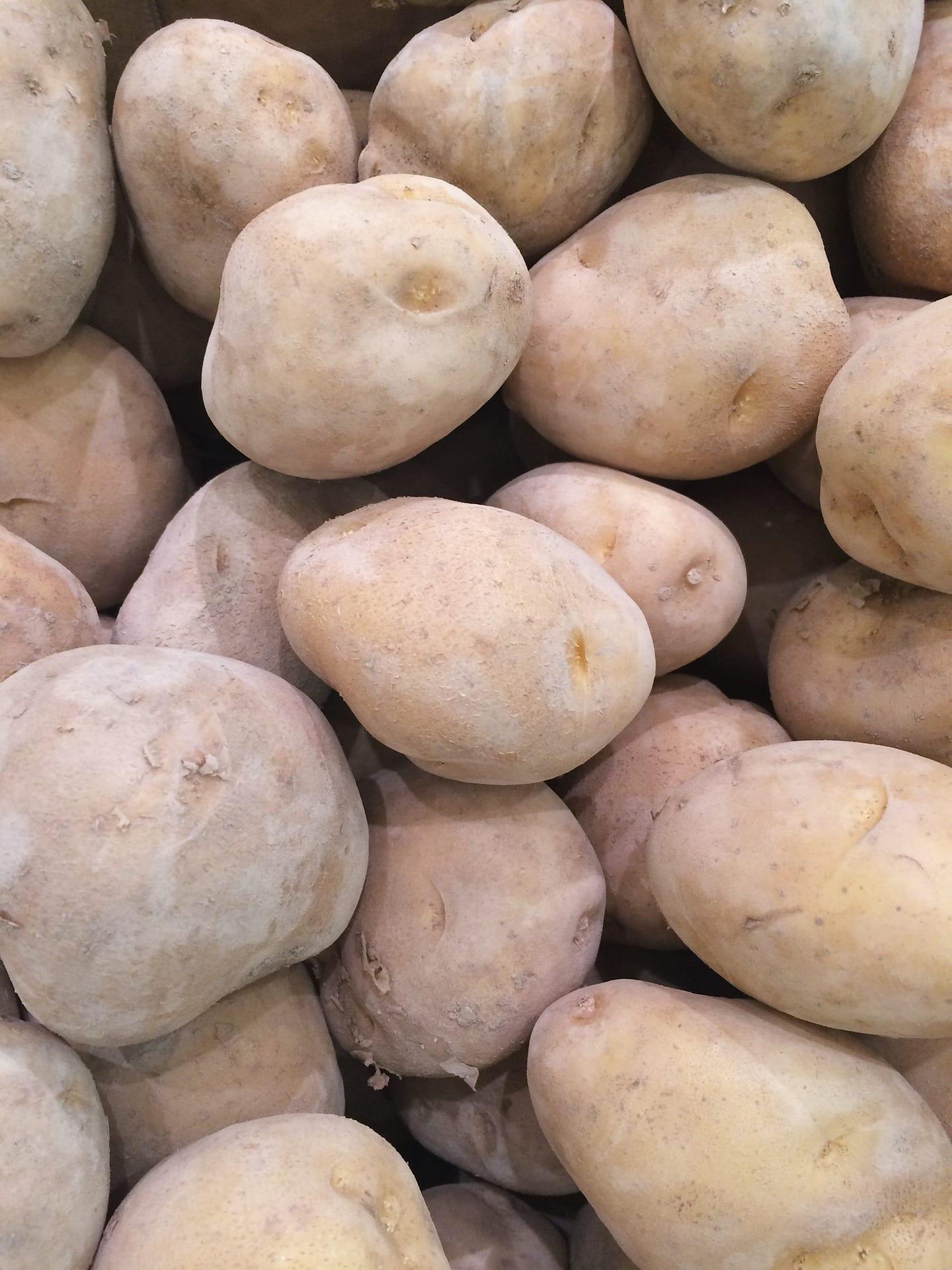 Patatas ecológicas. Foto: Información Gastronómica