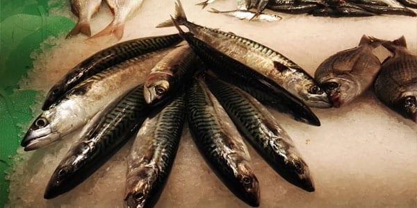 pescado en tu dieta