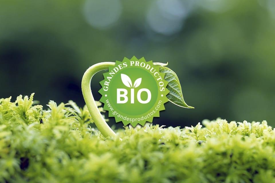 bio información gastronómica