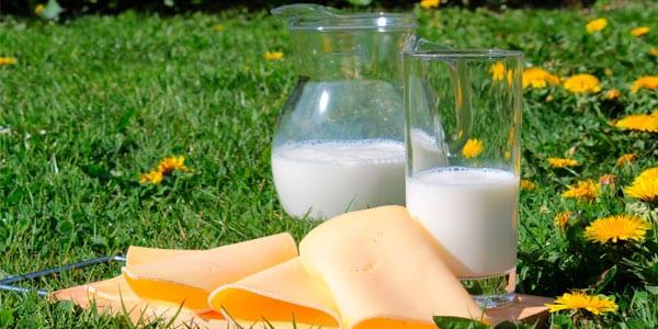 etiquetado para lácteos