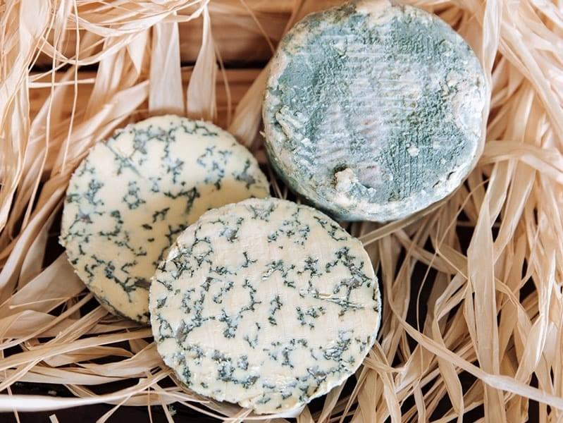 queso savel azul