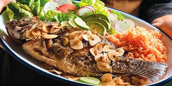 o tipo de peixe
