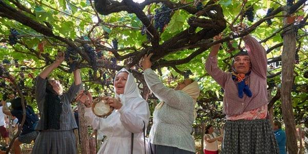 Wine Festival de Madeira