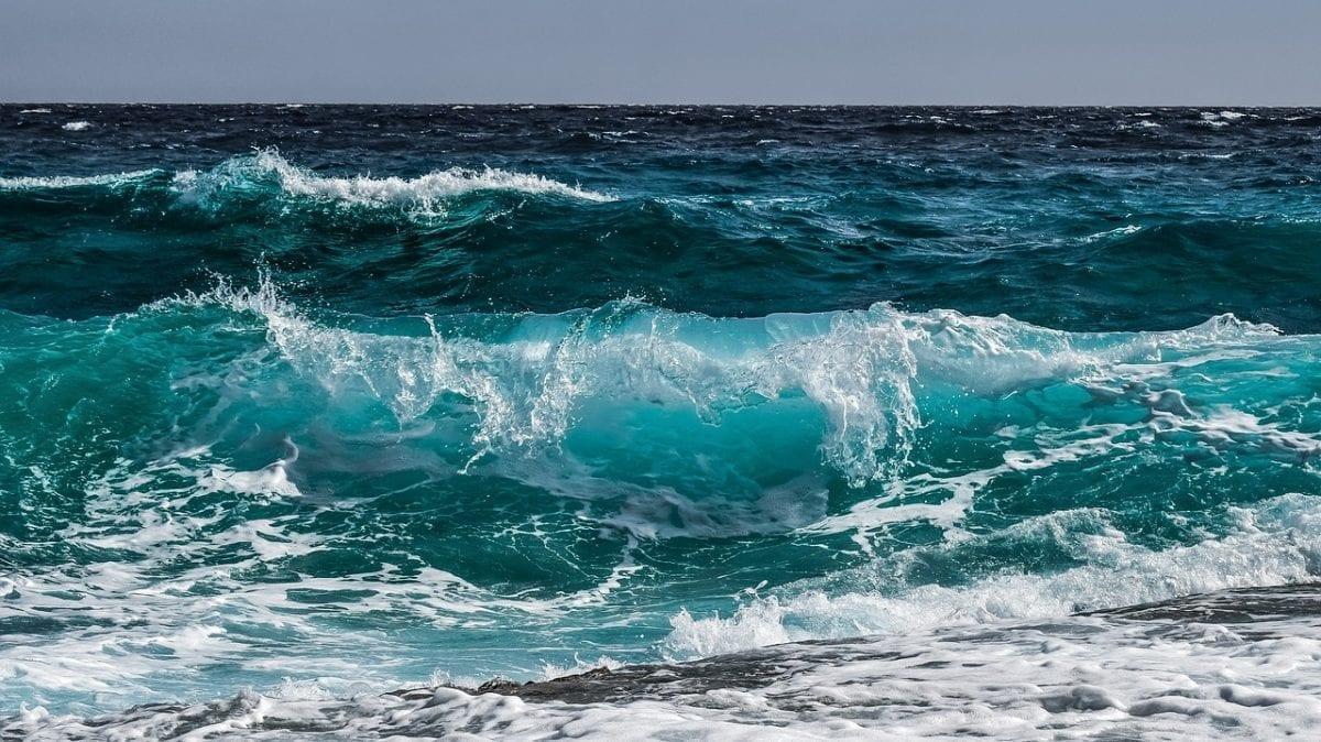 NEA y un agua sostenible océano