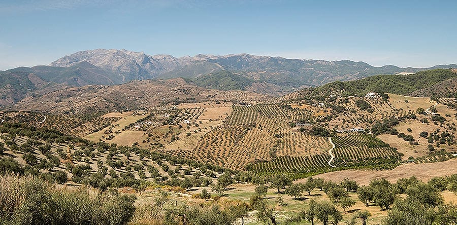 Valle del Guadalhorce Málaga