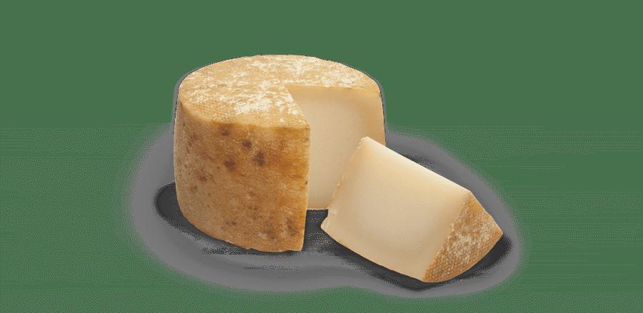 queso castellano oveja