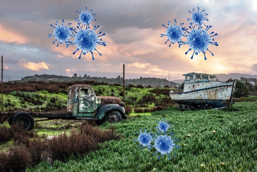 coronavirus y la supervivencia de sectores