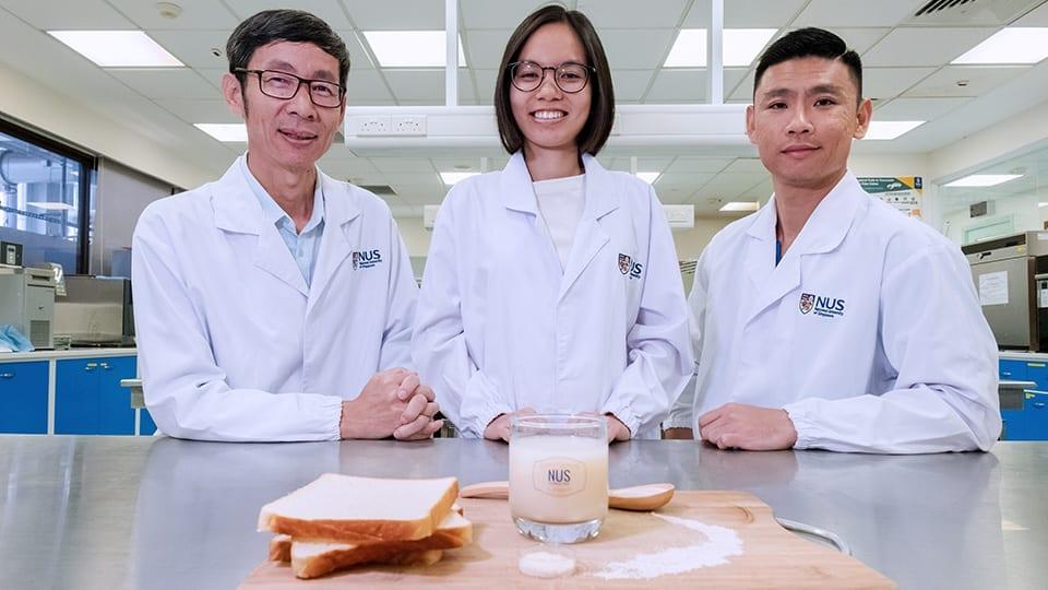 bebida probiótica de pan de molde