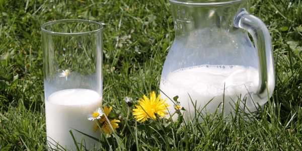 vía láctea de las leches