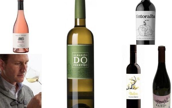 los mejores vinos jóvenes