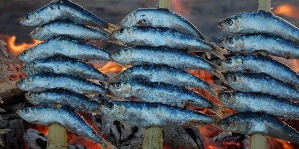 comer sardinas