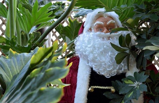 Papá Noel en Navidades tropicales