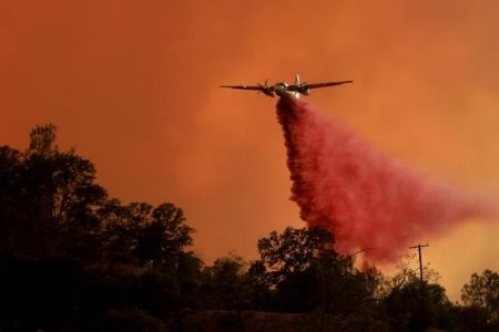 incendios en los viñedos de California