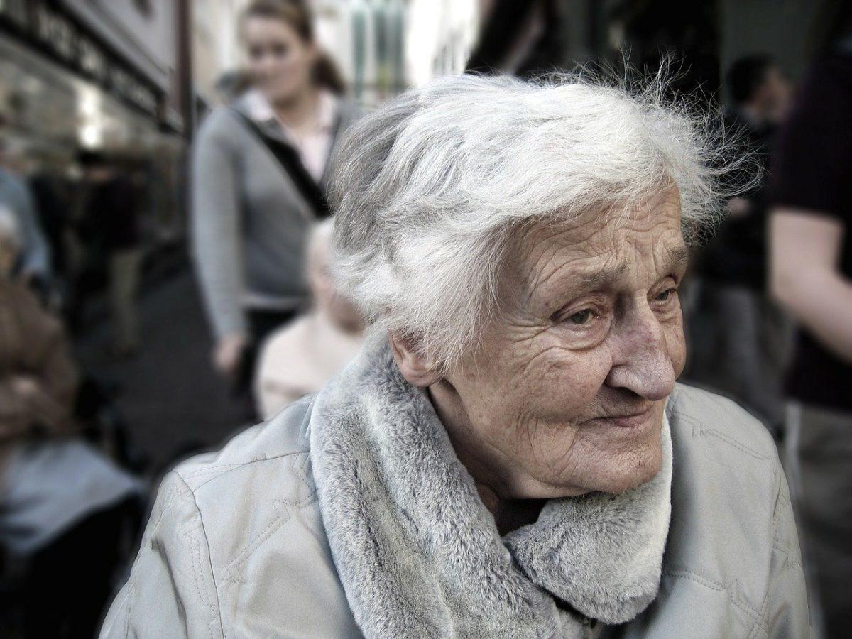óleo de bagaço contra Alzheimer