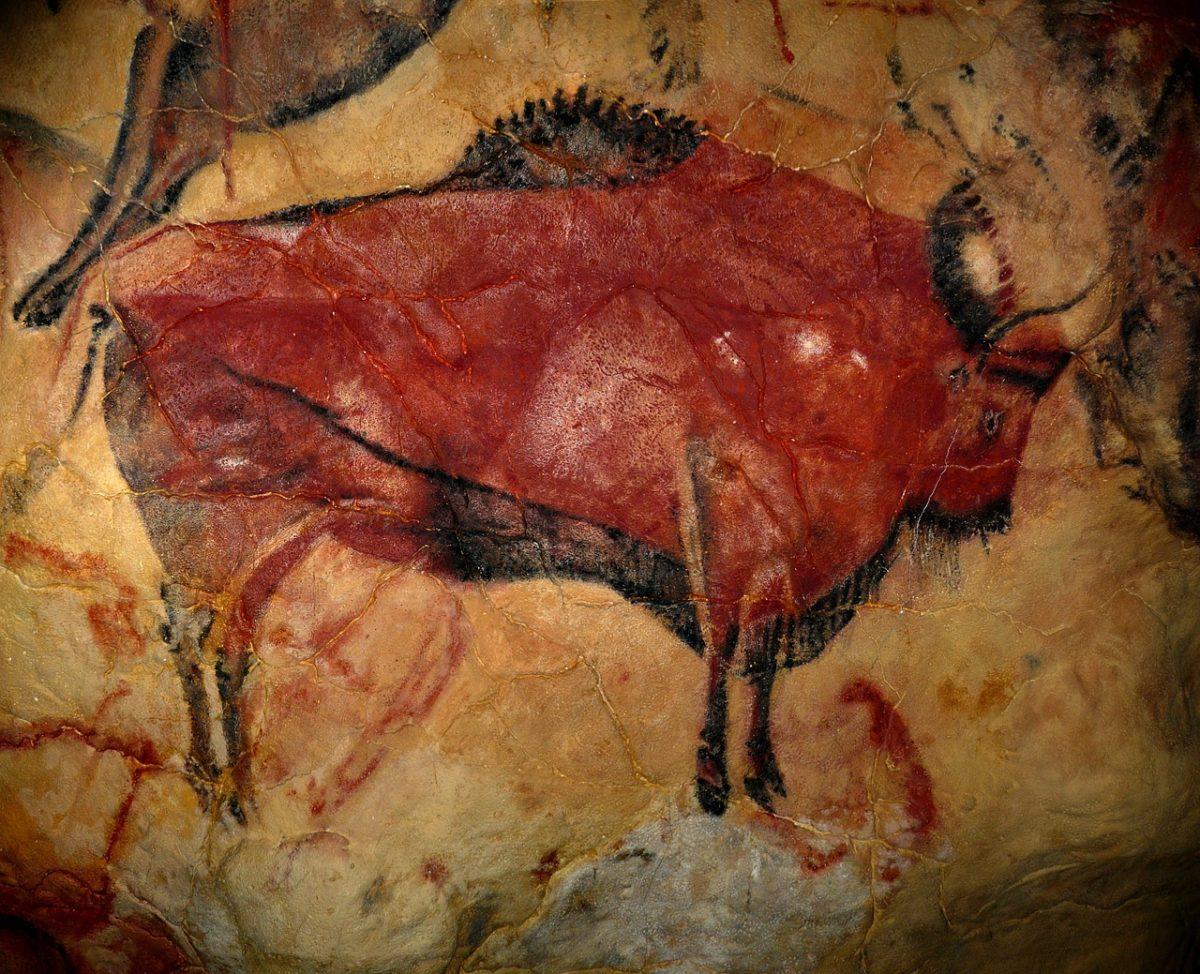 Bisonte pintado en la cueva de Altamira en Cantabria paleodieta