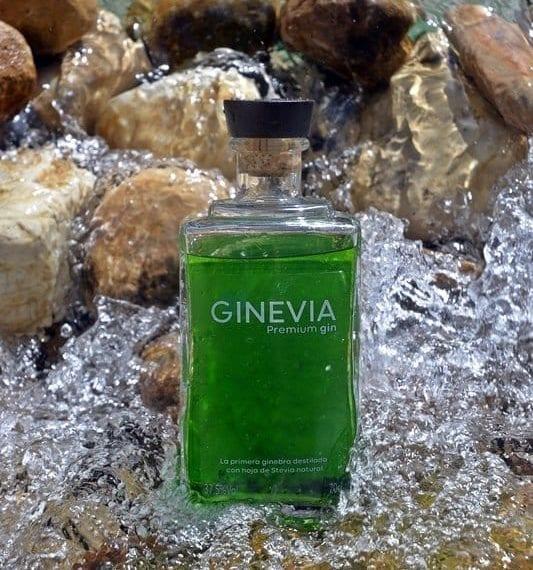 botella de la ginebra