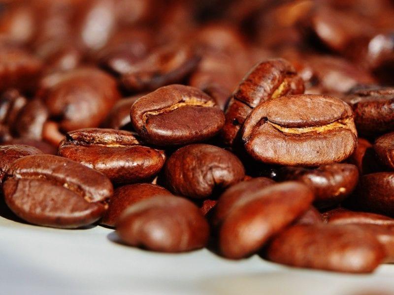 granos de café/café torrefacto