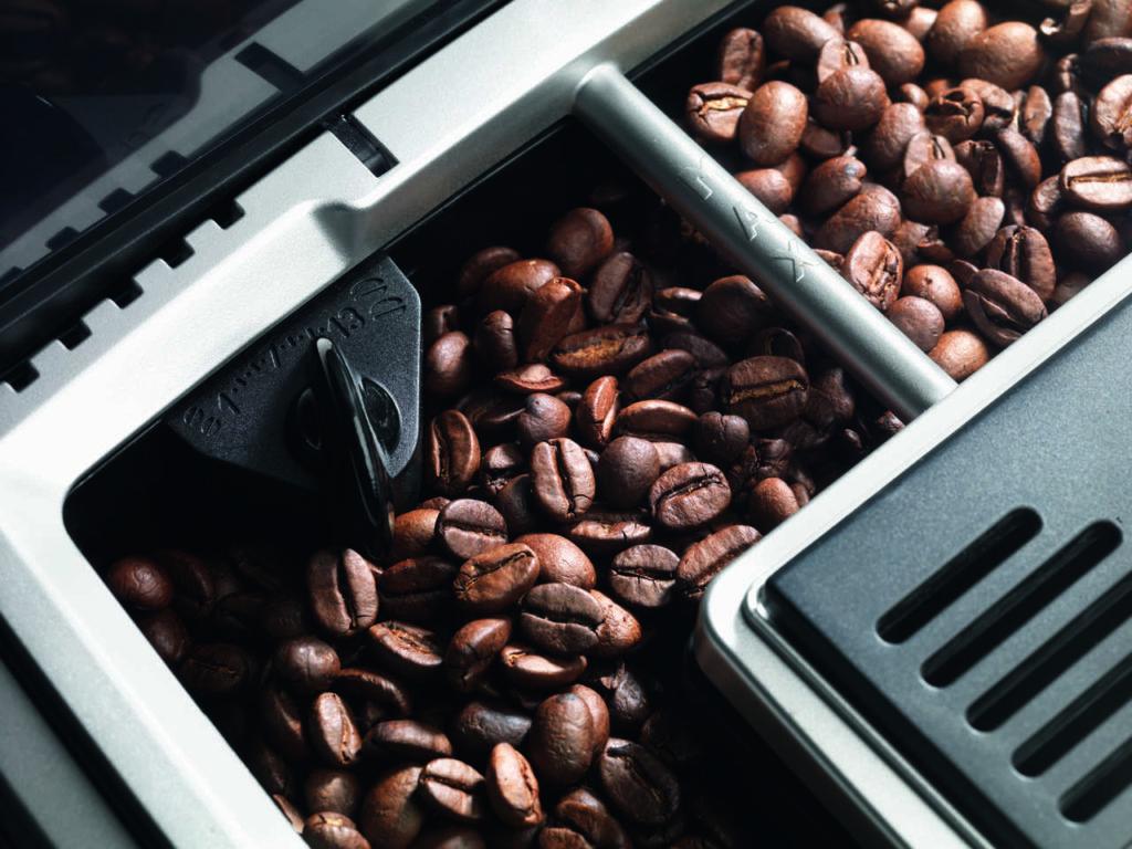 molinillo de granos de café