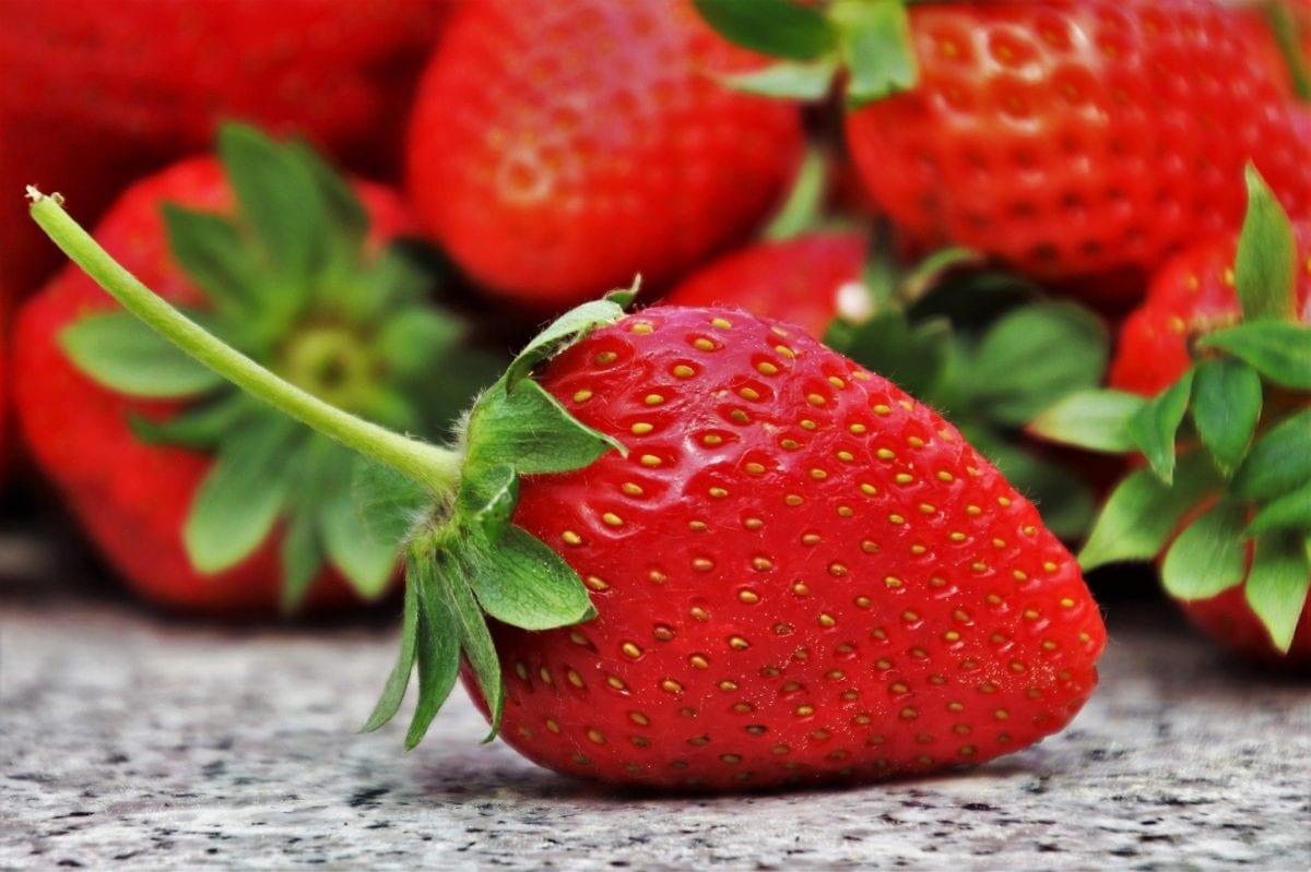 cómo conservar fresas