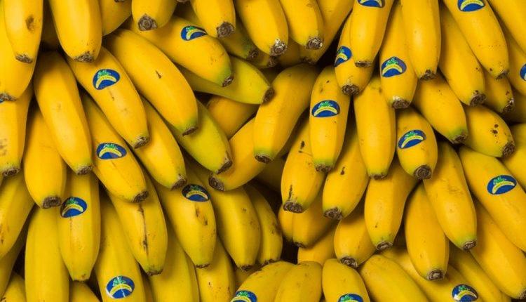 Por qué son los plátanos tan caros