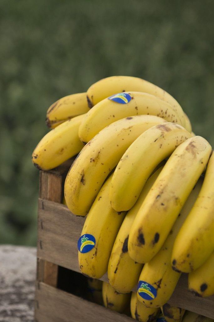 Por que as bananas são tão caras?
