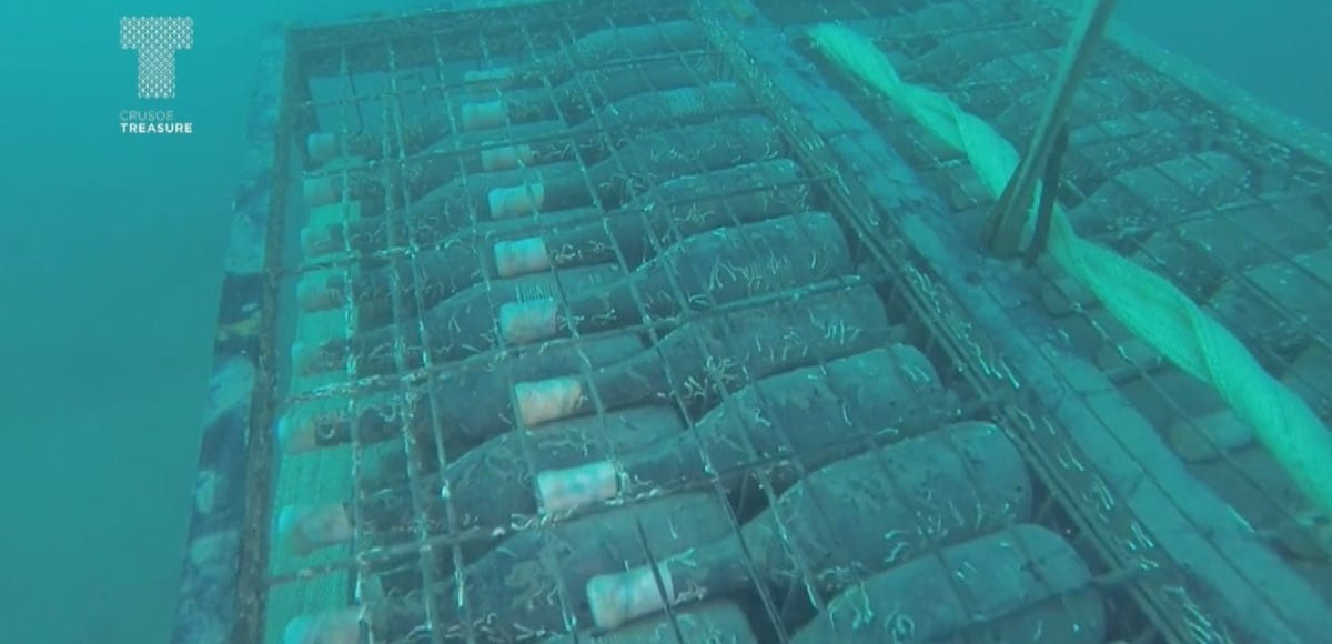 Unterwasser-Weingüter