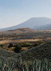 Vulcão My Land
