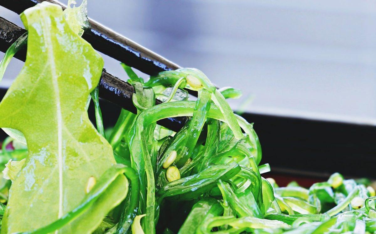algas como guarnición